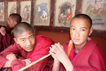 Title: Young Ladakhi Monks