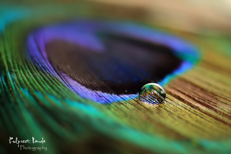 Color your life with a drop of faith