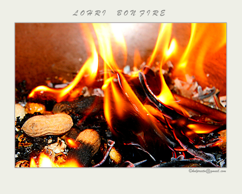 Images Of Lohri Celebration. Lohri (Indian festival)