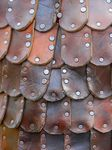 Title: Repetition - Leather Scales