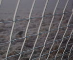 Title: Icy fence