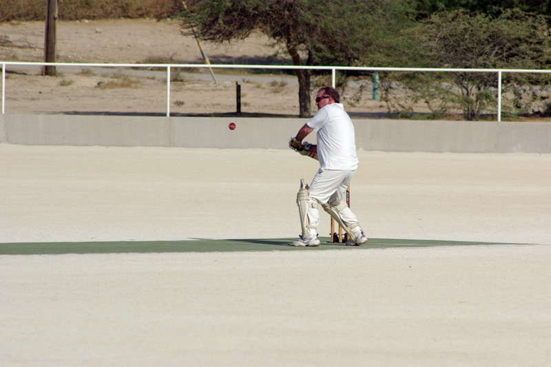 Cricket in 120 degrees