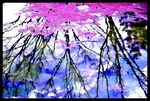 Title: in watercolour 2