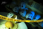 Title: CSI EGG EDITIONNikon D90