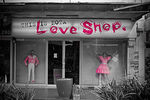 Title: Love ShopNikon D70s Digital SLR