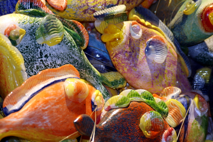 Superstition-fishes by