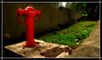 Title: Fire Hydrant