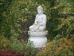 Title: Buddah in The Garden