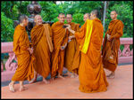 Title: Happy Thai Monks