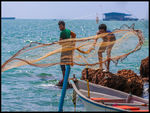 Title: Casting The Net