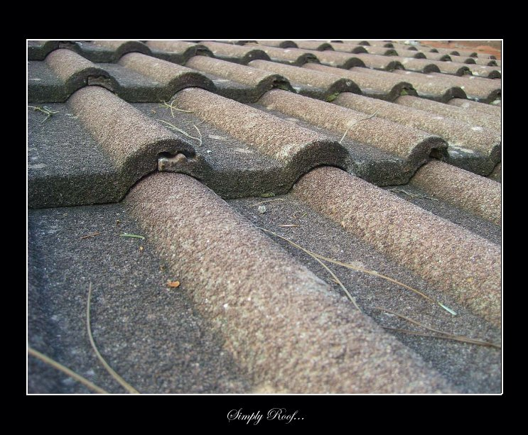 Simply Roof