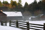 Title: Campbell Valley Park in Winter