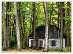 Title: *Little house in the forest*SONY DSC-H2