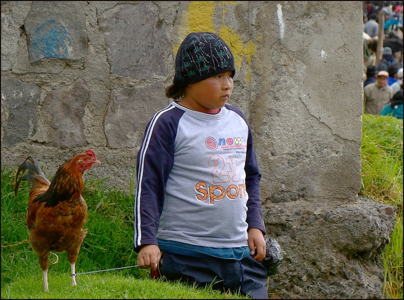 Young boy and his chicken