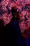 Title: Black Light 1Nikon D7000 with MB-D11 Multi
