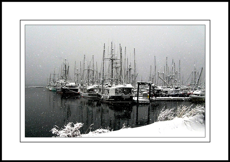 Comox Harbour