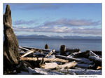 Title: Postcard from Comox, BCCanon Powershot A720 IS