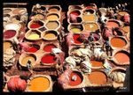 Title: the oldest leather tannery