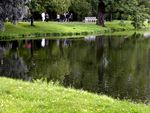 Title: reflections in the park