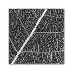 Title: Leaf Structure