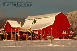 Title: Red Barn