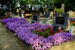 Title: Hungarian Cemetery