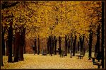 Title: Dreaming of home in autumn...Nikon D70s
