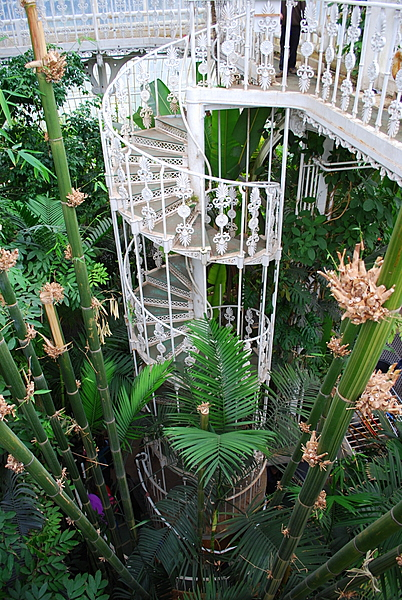 Inside the Palm House