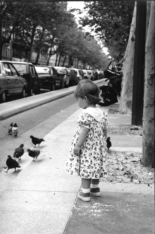 The child and pigeons