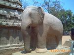 Title: Elephant in stone