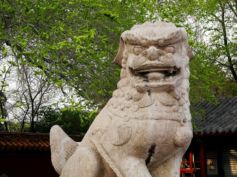 stone lion of the north China