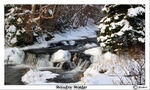Title: Wintry WaterCanon 20D