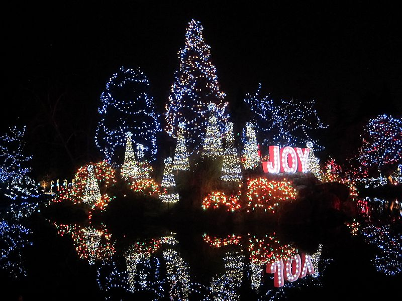 Joyous Lights
