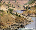 Title: The Thompson River