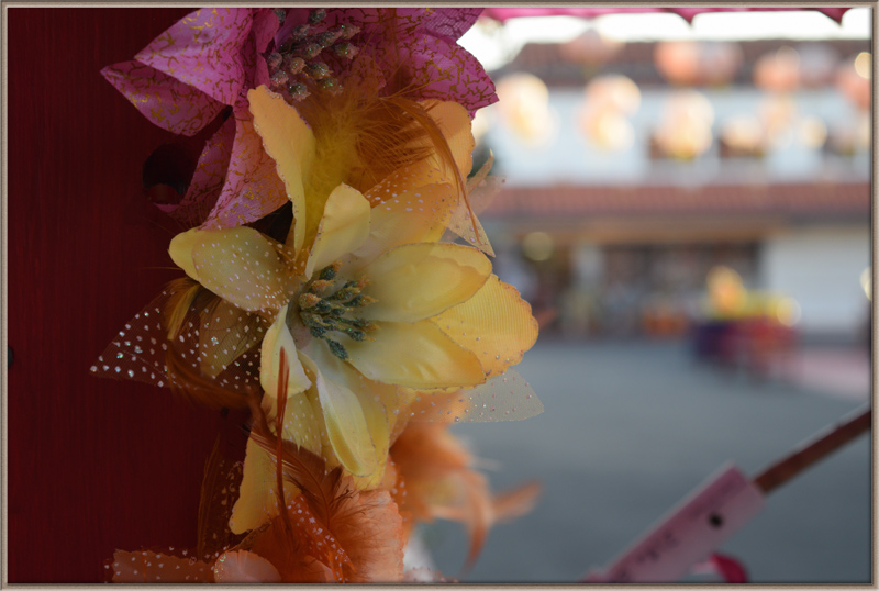 Flower in China Town