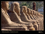 Title: Repetiton theme - Sphinx alleyNikon F3