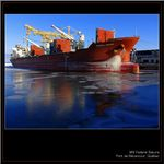 Title: Harbour reflections