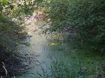 Title: Riverside Trail Hike Acanon A650is