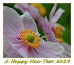 Title: A Happy New Year 2014Nikon D7000