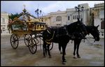 Title: Horse drawn funeral hearse Carriage