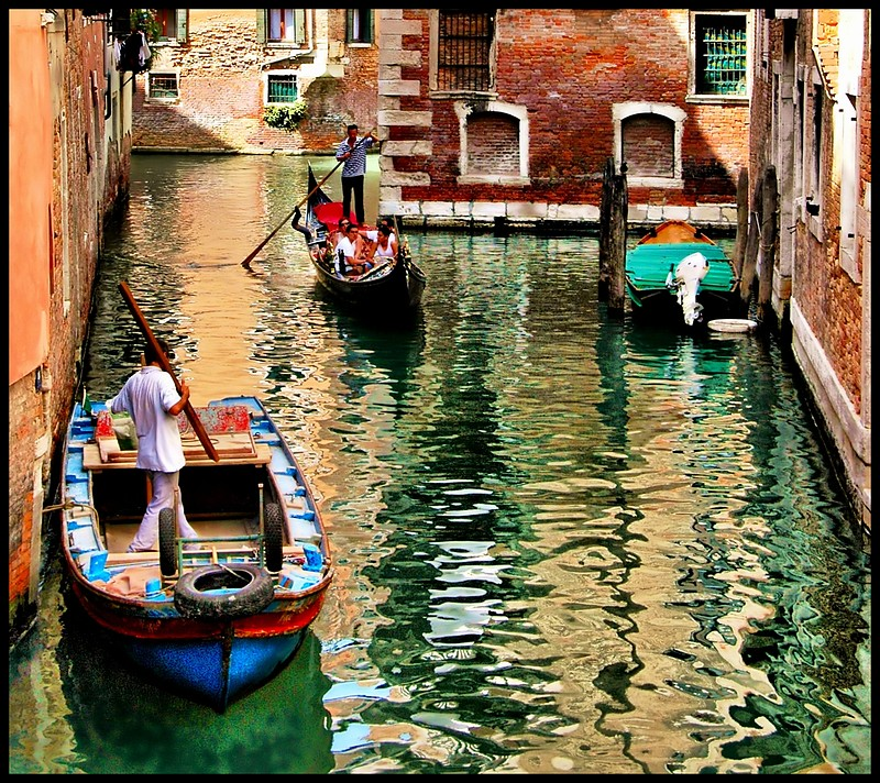 Activity in Venice Canal