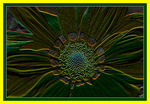 Title: yellow