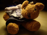 Title: This was my toy bear...