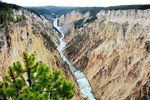 Title: Grand Canyon of YellowstoneCanon Power Shot S5 IS