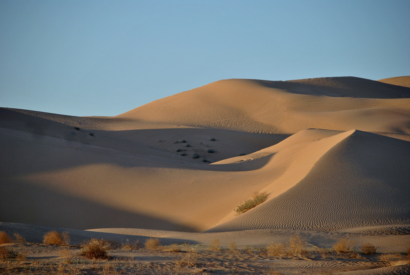 Imperial Sand Dunes #3