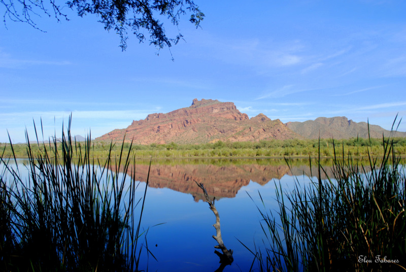 Reflection On Salt River