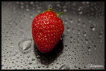Title: Thirsty Strawberry...Canon EOS 50D