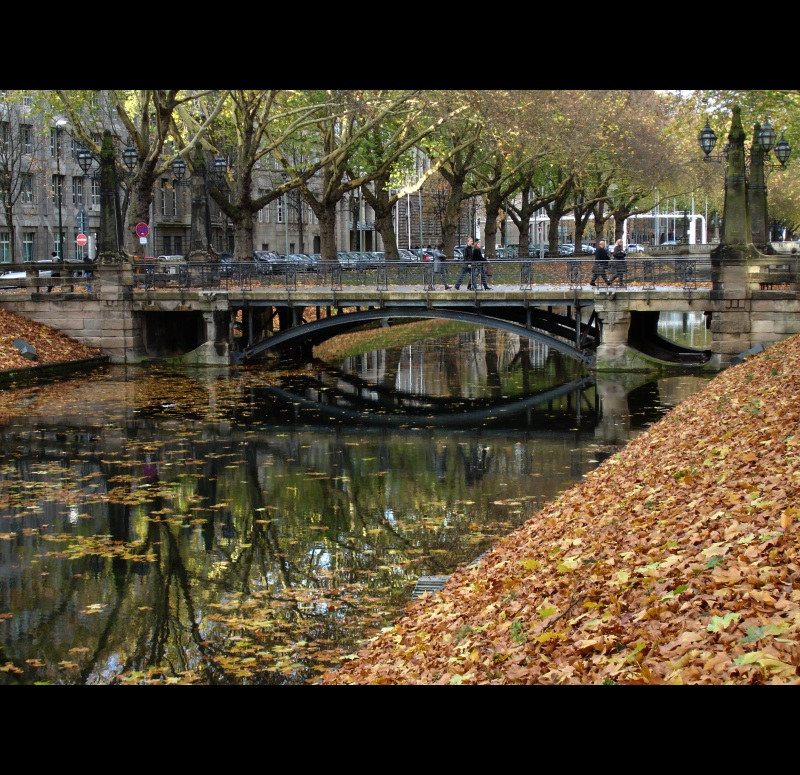 The charm of Autumn