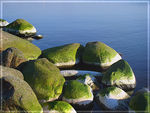 Title: The green stones in sunset light