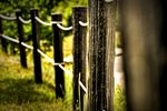 Title: Pagar/Fence